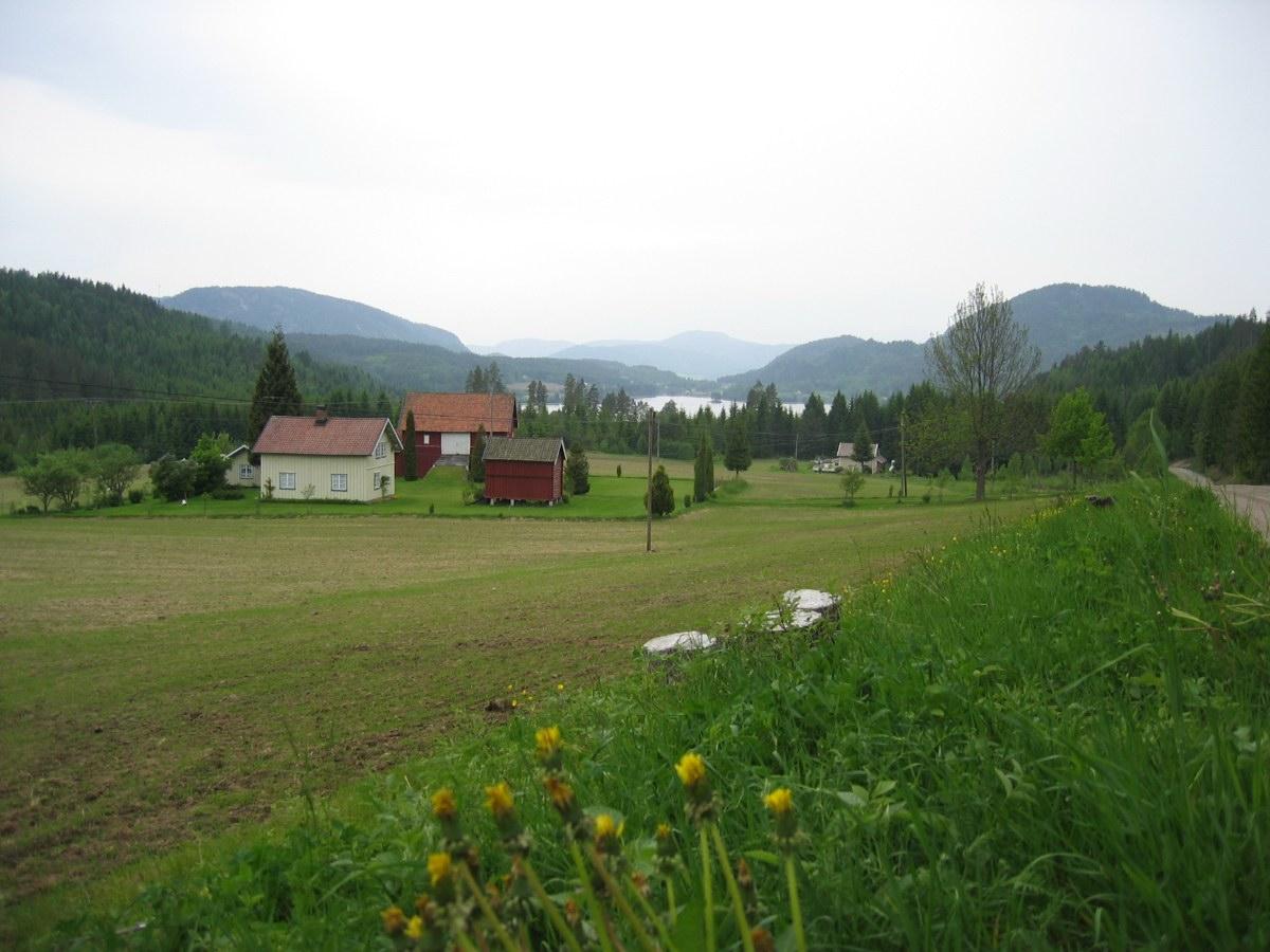nils lindgren